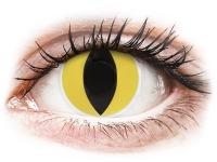 alensa.pt - Lentes de contacto - Lentes de Contacto Crazy Lens Olhos de Gato Cat Eyes - ColourVUE