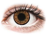 alensa.pt - Lentes de contacto - Lentes de Contacto Elegance Marrom - ColourVUE