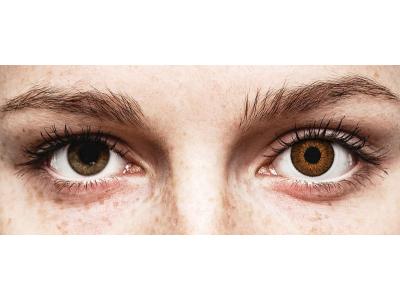 Lentes de Contacto Expressions Colors Marrom (1 lente)