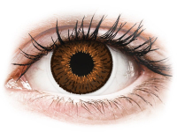 alensa.pt - Lentes de contacto - Lentes de Contacto Expressions Colors Marrom com correção