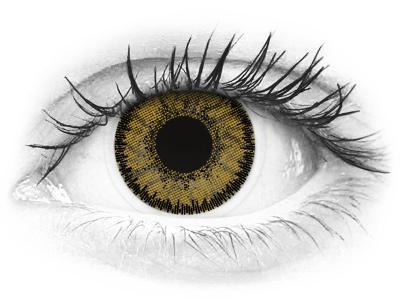 SofLens Natural Colors Dark Hazel - sem correção (2 lentes)